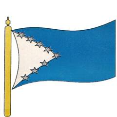 Bandera Colmemi